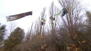 Protesters perch in the tree-tops at Stapleton Allotments in Bristol