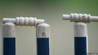 Close-up of cricket stumps