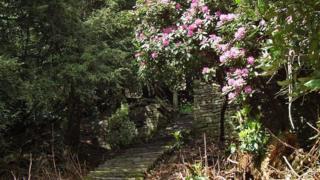 The Walled Garden on the Penllergare Estate