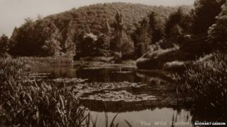 Old photo of the Wild Garden