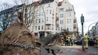 An uprooted tree in a street after it fell on a car in the district Wedding in Berlin, Germany, 31 March 2015