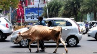 Indian man walks with his cow on the busiest street of Bangalore, India on 01 April 2015.