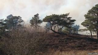 Smoke visible above the trees