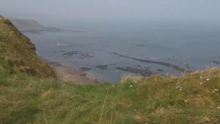 Cliff near Filey