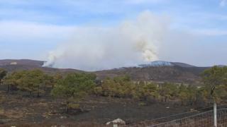 Wildfire near Dornoch