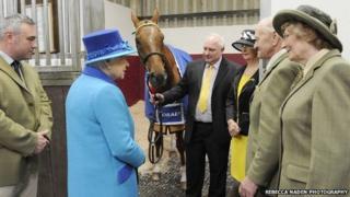 The Queen meeting horse Al Co