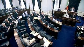 Irish Senate