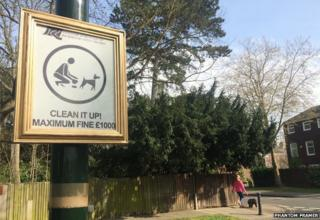 Dog fouling sign with frame