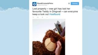 Lost teddy appeal