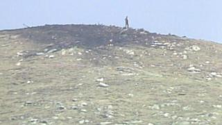 Crash site on Harris