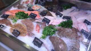 Fish on display at Gloucester Services