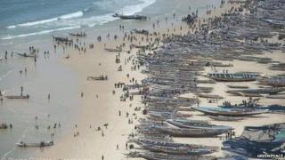 Fishing pirogues in Kayar, Senegal
