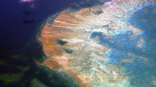 An aerial view of Australia's Great Barrier Reef