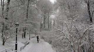 New York's Central Park in March
