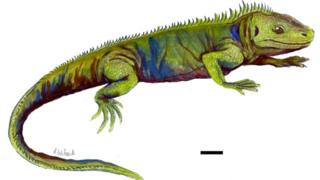Reconstruction of what Clevosaurus sectumsemper may have looked like