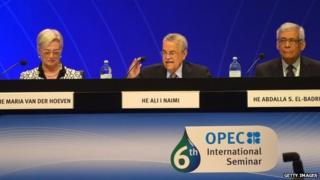 OPEc seminar in Vienna