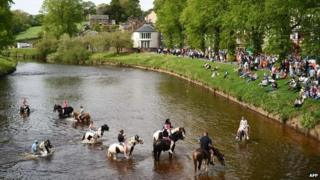 Horses in the River Eden at the Appleby Horse Fair