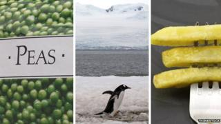 Frozen peas, the Antarctic and chips