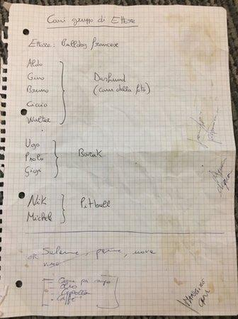 The shopping list for dogs