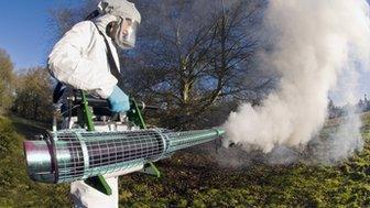 chemical spray