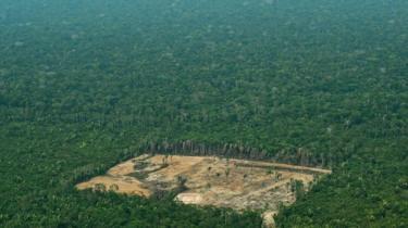 Desmatamento da Amazônia, em foto de 2018