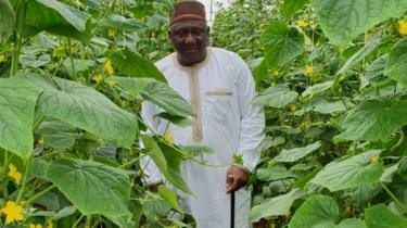 Shehu Usman Chindo Yamusa