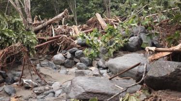 Bongkahan batu dan pohon yang menerjang kawasan lereng Pegunungan Cycplos.