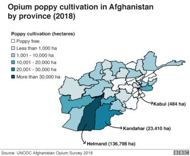 Map shows parts of Afghanistan where the most opium poppy is grown. Highlights Helmand province, which grows the most.
