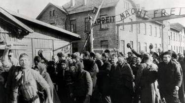 Survivors of Auschwitz leave through the infamous gates of Auschwitz I after the liberation