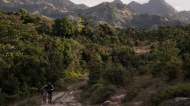 A man pushes a bicycle close to a vanilla plantation forest in Madagascar