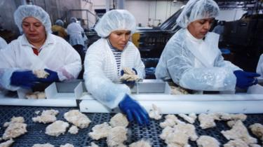 Employees preparing chicken at the Tyson factory