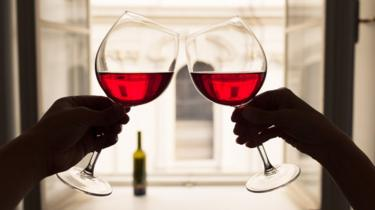 Two people's hands toasting with red wine