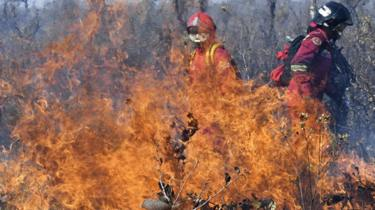 Firefighters try to control a fire near Charagua, Bolivia, in the border with Paraguay, south of the Amazon basin, on August 29, 2019