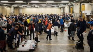 Buyers, workers and auctioneers attend the final tuna auction at the landmark Tsukiji fish market in Tokyo on October 6, 2018