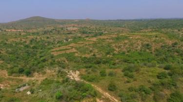 முல்லை நிலம்