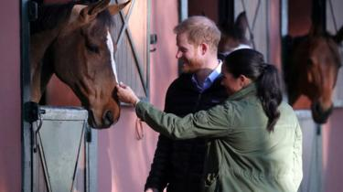 The Duke and Duchess of Sussex stop to stroke a horse