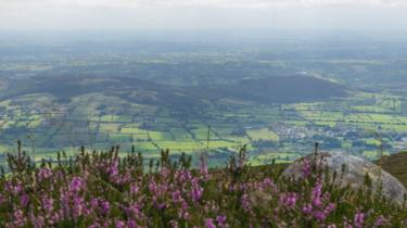 Irish landscape: view from the top of Slieve Gullion (County Armagh)