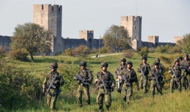 جنود سويدون