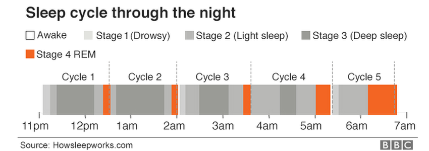 sleep cycle through the night from awake to drowsy to light sleep, deep sleep, REM sleep and back