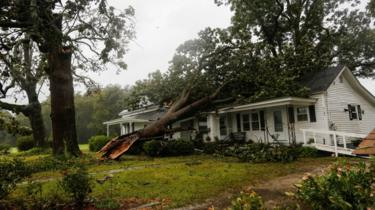 A tree is poictured on top of a house in Wilson, North Carolina