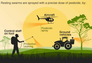 Pesticide graphic
