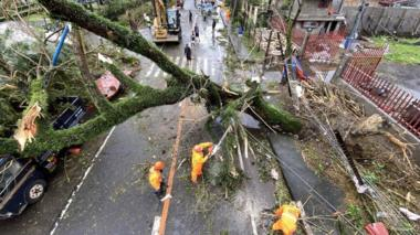 Filipino government workers clear a toppled tree in the typhoon-hit town of Tigaon, Camarines Sur, Philippines, 01 November 2020