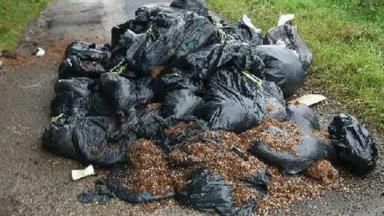 post-image-Cannabis waste in woodland costs Woodland Trust thousands to clear