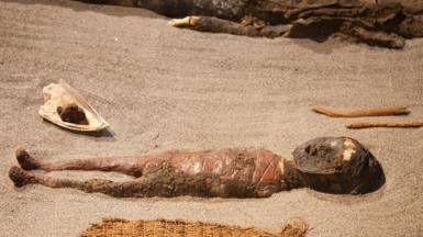 Chinchorro mummy of a baby on display at the San Miguel De Azapa Archaeological Museum