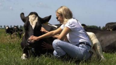 Woman cuddling a cow