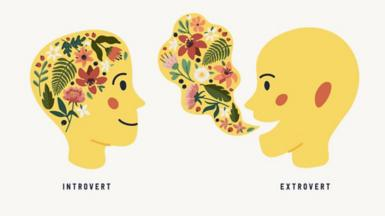 Illustration of introvert and extrovert