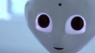 Pepper, a robot