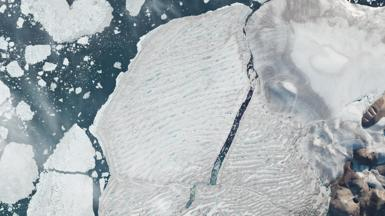 Milne Ice Shelf
