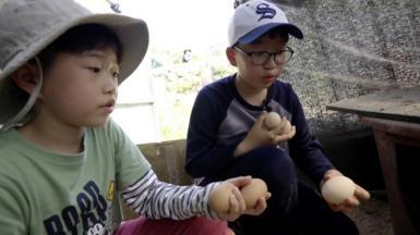 Boys in South Korean village