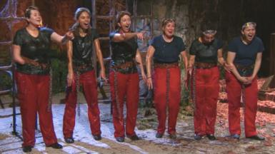 The female contestants on this year's I'm A Celebrity